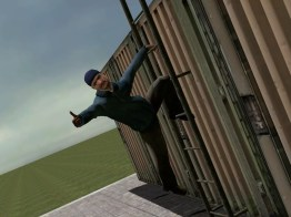ladder over fence
