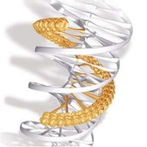 Three-Strand DNA